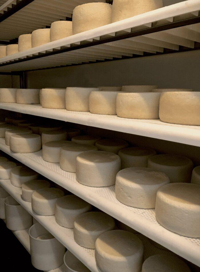 formaggio pecorino del monte poro