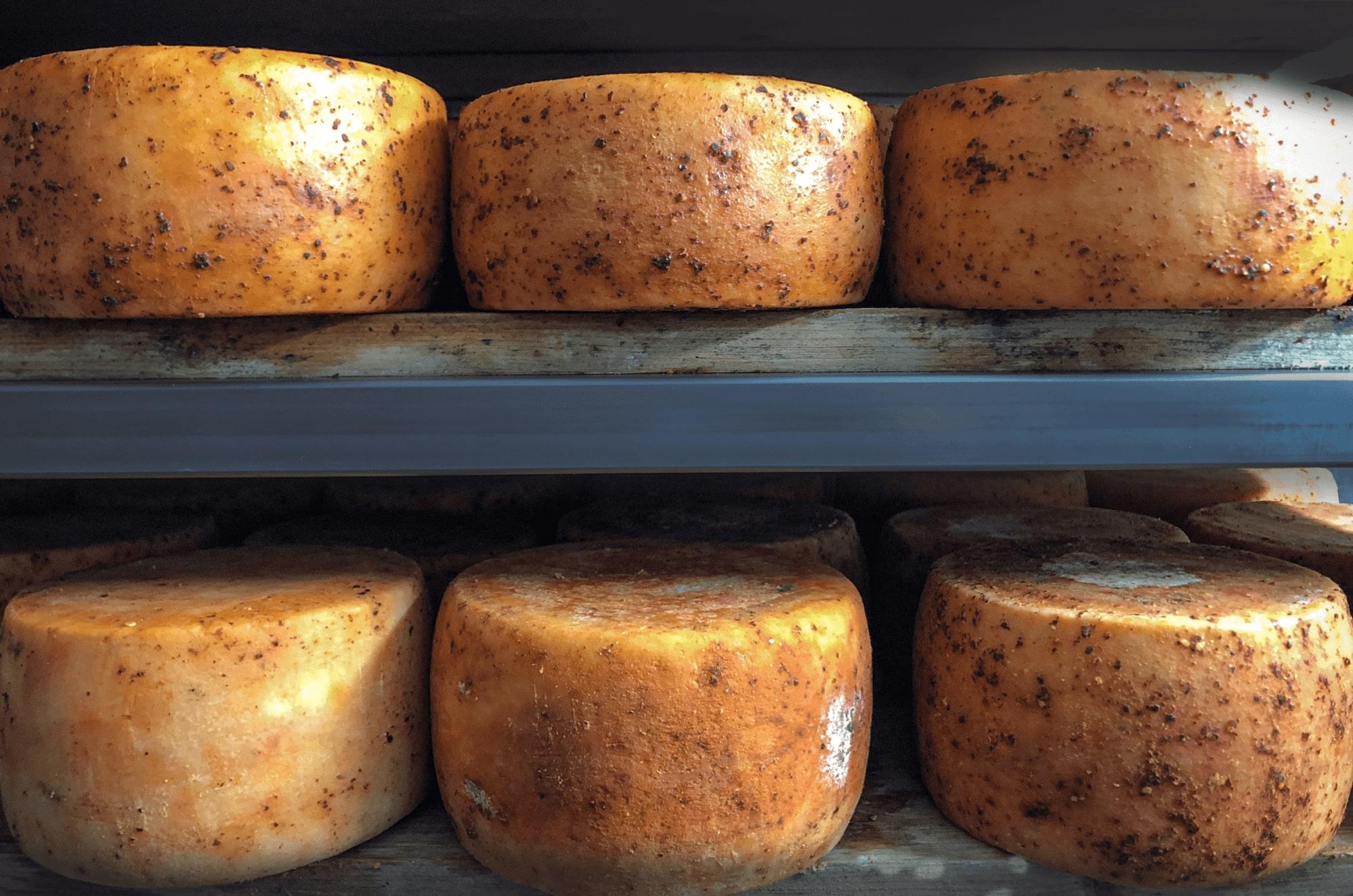 formaggio eccellenza pecorino del monte poro stagionato